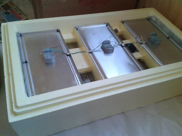 inkubatory1